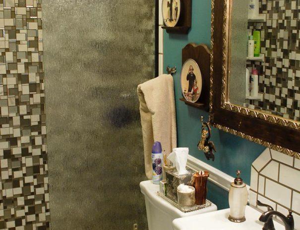 Lower Level Hallway Bathroom
